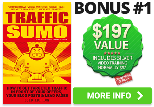 Traffic Sumo Bonus
