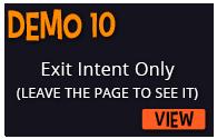 Demo-10
